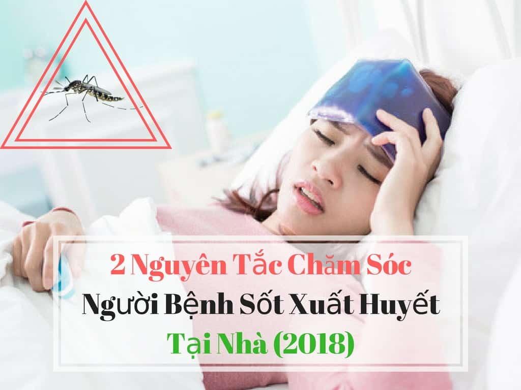 2 Nguyên Tắc Chăm Sóc Người Bệnh Sốt Xuất Huyết Tại Nhà (2018)