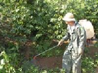 Ngộ độc thuốc diệt cỏ – xử lý thế nào? – Mạng thông tin y học và sức khỏe cộng đồng