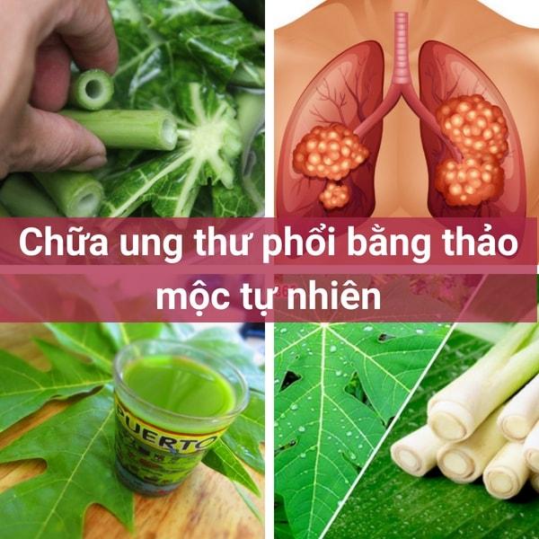 chua-ung-thu-bang-thao-moc-tu-nhien