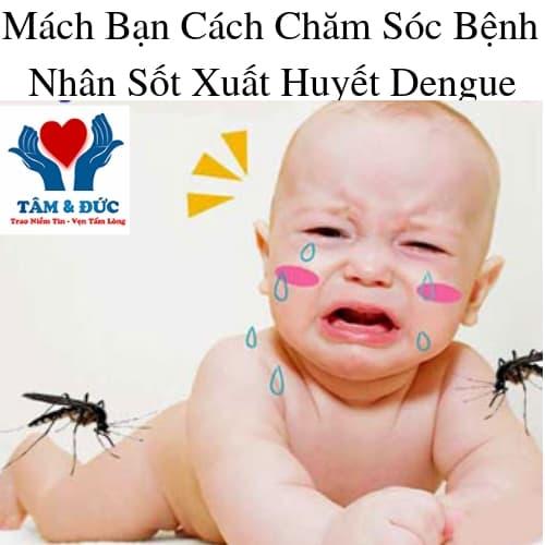Chăm Sóc Bệnh Nhân Sốt Xuất Huyết Dengue