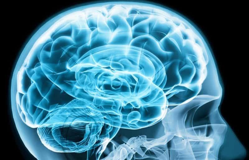 Triệu Chứng Của Ung Thư Não Giai Đoạn Cuối