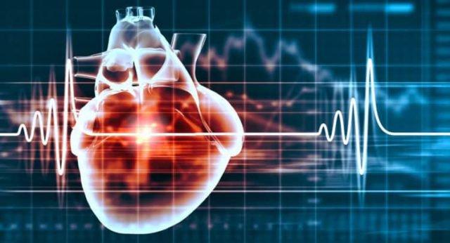 Các loại bệnh tim mạch khi chăm sóc người cao tuổi mà bạn nên biết